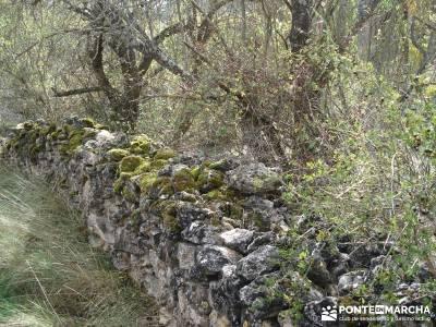 Hoces del Río Duratón - Sepúlveda;reto senderismo desafío senderista sierra de guadarrama sender